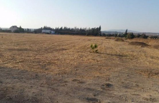 Agricultural Land in Kolossi